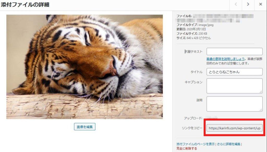 LIQUID SPEECH BALLOONの画像URL